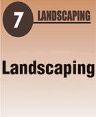 7-landscaping